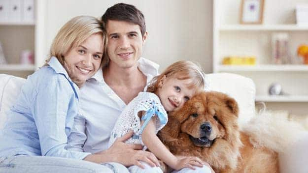 Wills & Trusts dog-young-family Direct Wills Longbridge